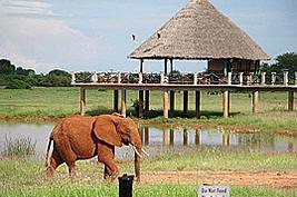 Voi Wildlife Lodge