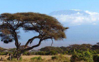 3 Days Nairobi Safari to Amboseli and Tsavo West