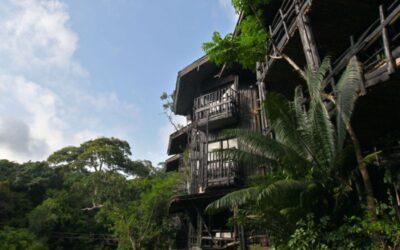 1 Day Shimba Hills lodge safari – Mombasa Excursions and Day Trips